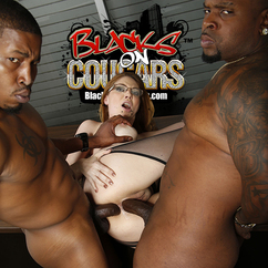 Cougars with blacks