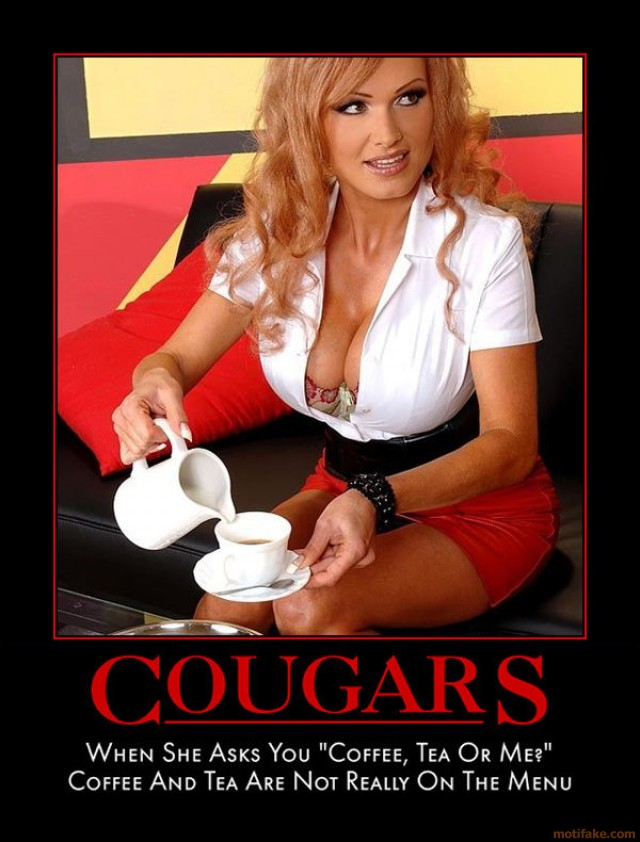 Definition of cougar dating