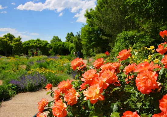 Red butte gardens free day