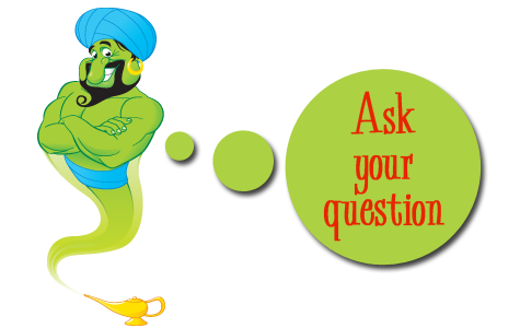 Ask genie game