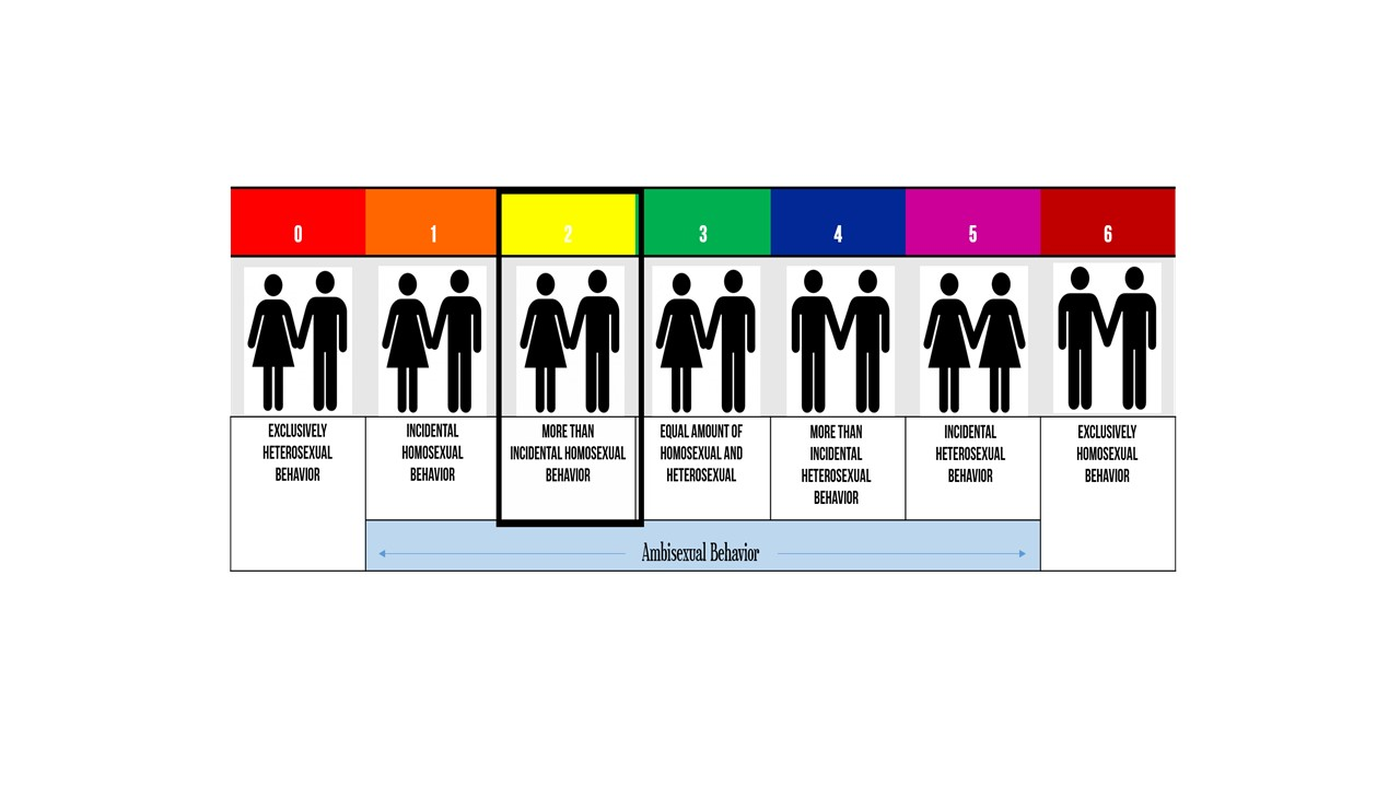 How to tell if you are bisexual quiz