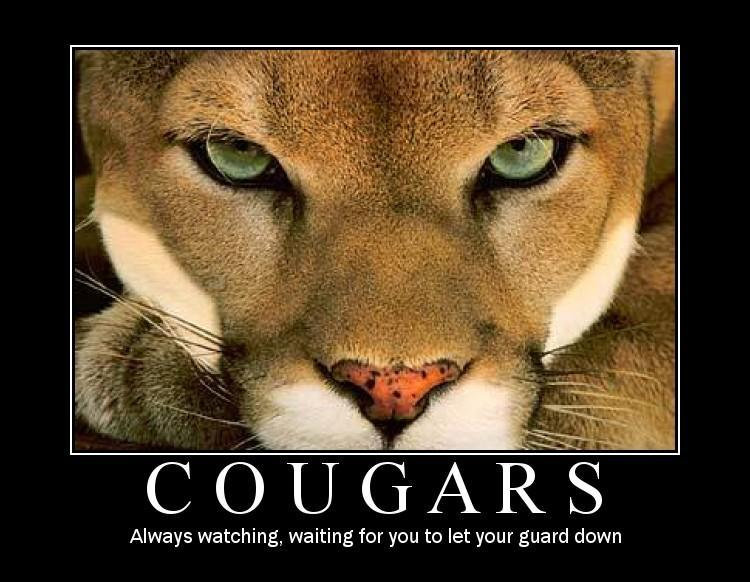 Funny jokes about cougars
