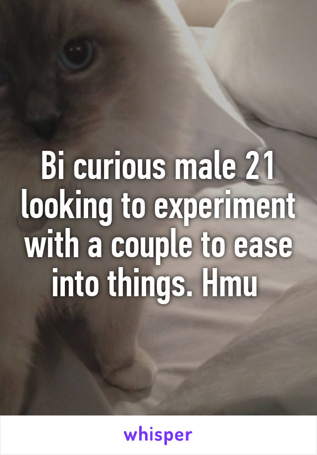 Couple looking for bi male