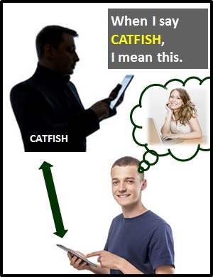 What does it mean to be catfished